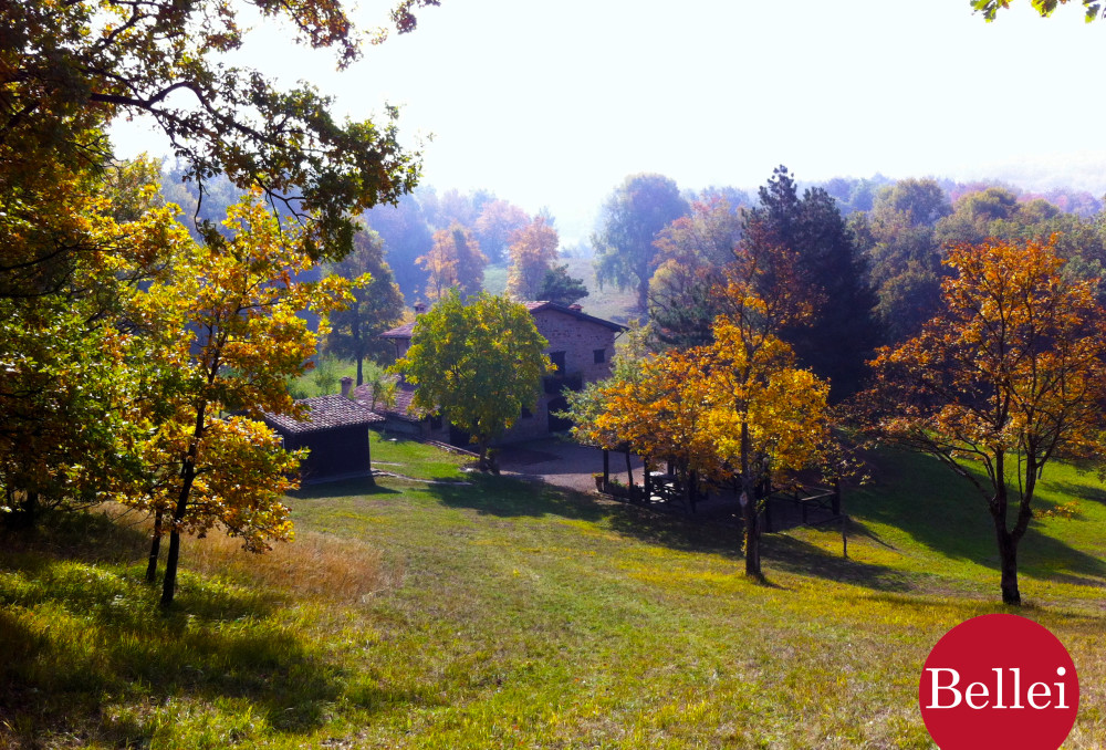 Cottage in the countryside, with lovely pond and 75.000 square meters of forest. Serramazzoni (Modena). Sale.