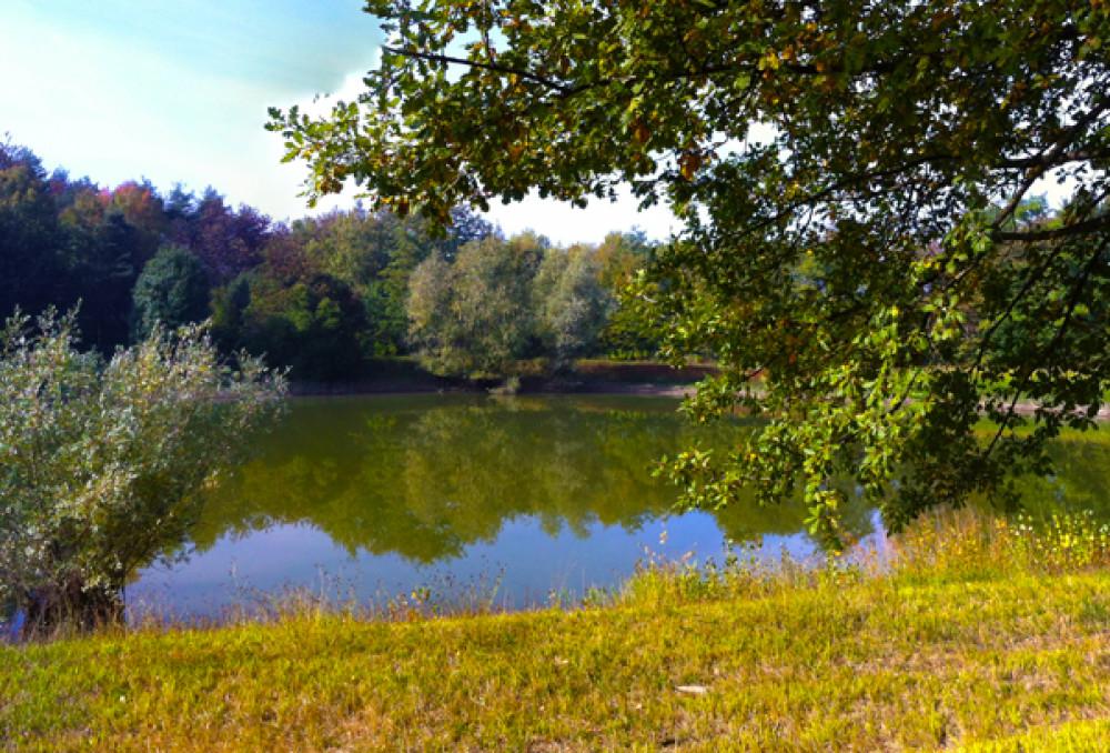 Rustico immerso nel verde incantevole con laghetto e 75 for La casa nel laghetto
