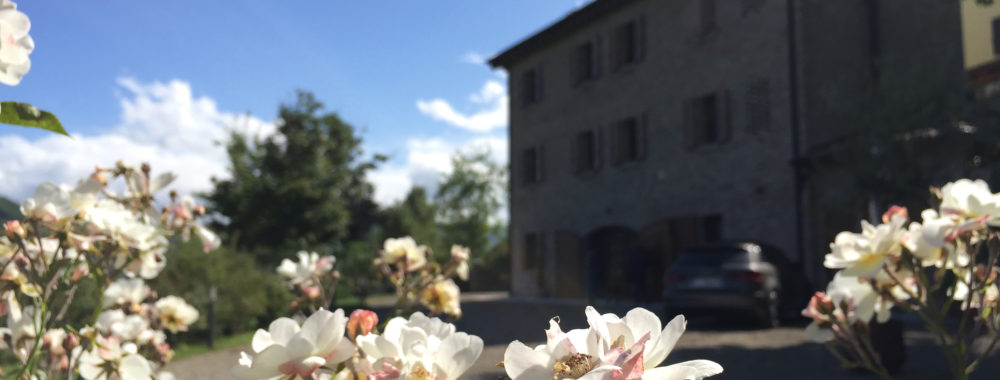 Великолепный деревенский отреставрированный отель, расположенный в природном парке Соусов Нирано.